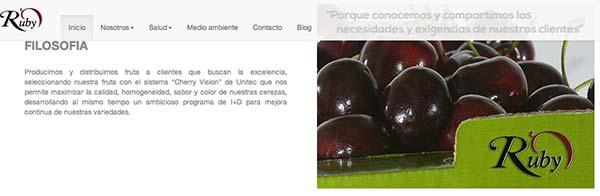 Nuevo proyecto de 3llideas: realizamos la nueva web de Rio Cinca