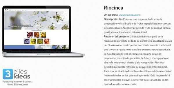 Actualizamos nuestro portafolio: realizamos la nueva web de Rio Cinca