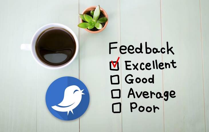 Maximiza la interacción en redes sociales con las encuestas de Twitter